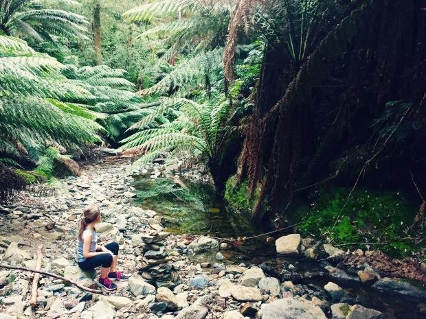 Holwell Gorge walking track Tasmania Australia
